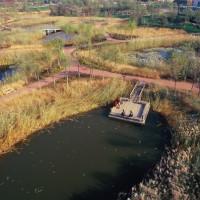 alt Qiaoyuan Park
