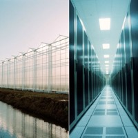 alt symbiosis of greenhouse and datacentre