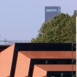 alt Biogas plant